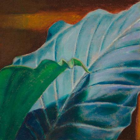 Ombra Cargolada Acrílic sobre tela 30 x 30 cm