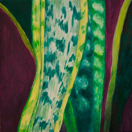 Sansiveria Acrílic sobre tela 30 x 30 cm