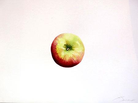 Poma reineta Acuarel·la 31 x 23 cm